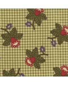 Audra's Iris Garden by Brannock And Patek