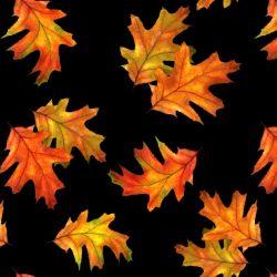 Autumn Splendor by Robert Giordano