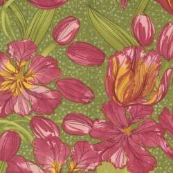 Tulip Tango by Robin Pickens