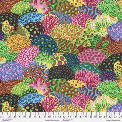 Treasure Island by Snow Leopard Designs
